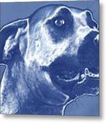 Cyanotype Dog Metal Print