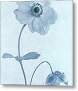 Cyanotype Windflowers Metal Print