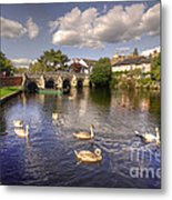 Cygnets At Christchurch  Metal Print