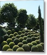 Cypress And Boxwood Garden Metal Print