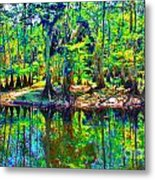 Cypress Coast Metal Print