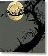 Cypress Moon Metal Print