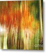 Cypress Pond Metal Print by Scott Pellegrin