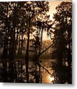 Cypress Sunrise Metal Print