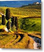 Cypresses Of Toscany Metal Print