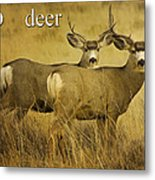 D Is For Deer Metal Print