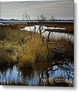 Da Pause That Reflexes Metal Print