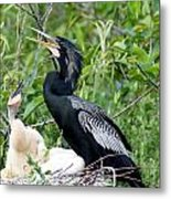 Dad And Chick Metal Print