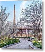 Daffodil Path Metal Print
