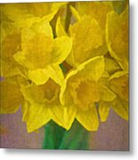 Daffodils 10 Metal Print