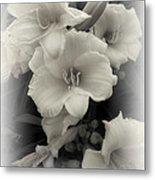 Daffodils Emerge Metal Print