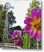 Dahlia Bee And Windmill Metal Print