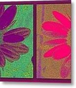 Daisies Purple Pink Metal Print
