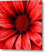 Daisy Daisy Neon Red Metal Print