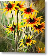 Daisy Do Metal Print