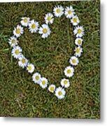 Daisy Heart Metal Print
