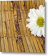 Daisy On Bamboo Metal Print