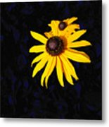 Daisy On Dark Blue Metal Print