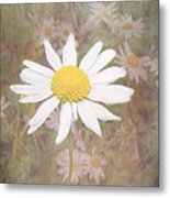 Daisy Textured Metal Print