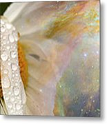 Daisy With Hubble Cosmos Metal Print