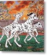 Dalmatians Three Metal Print