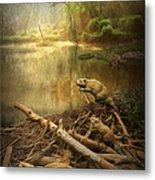 Dam Beavers Metal Print
