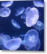 Dance Of The Jelly Fish Metal Print