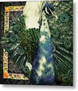 Dance Of The Peacock Metal Print
