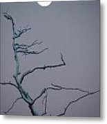 Dancing By The Light Of The Moon Can Metal Print