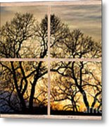 Dancing Forest Trees Picture Window Frame Photo Art View Metal Print