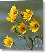 Dancing In The Wind Metal Print