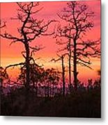 Dancing Trees Into The Fire Metal Print