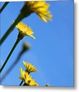 Dancing With The Flowers Metal Print