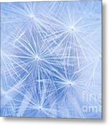 Dandelion Atmosphere Metal Print