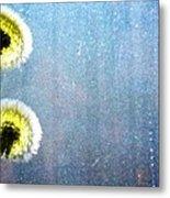 Dandelion Parachute Balls Metal Print