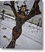 Daphene Sculpture On A Winter Day Metal Print