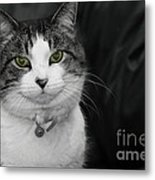 Dare To Look Into My Green Eyes Metal Print