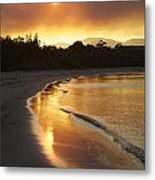 Dare To Shine Metal Print by Lee Stickels