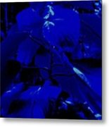 Dark Blue Leaves Metal Print