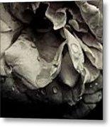 Dark Flower 13 Metal Print
