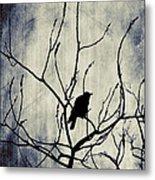 Crow In Dark Lights Metal Print