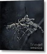 Dark Poetry Metal Print