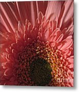 Dark Radiance Metal Print