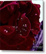 Dark Red Rose Metal Print