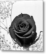 Dark Rose Sq Metal Print