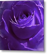 Dark Secrets Purple Rose Metal Print by Jennie Marie Schell