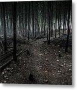 Dark Trail Metal Print