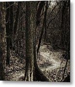Dark Winding Path Metal Print