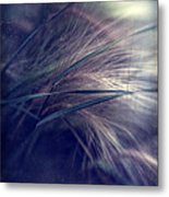darkly series I Metal Print