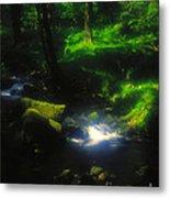 Dartmoor Stream Metal Print